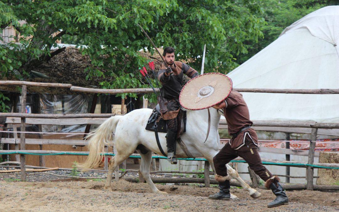 Демонстрация Бойна езда